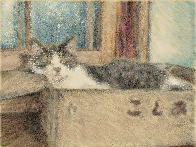 Nintendo 3DS LL_Cat Sketch_20130924.jpg