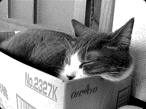 iPad 3rd_cats_20130818.jpg