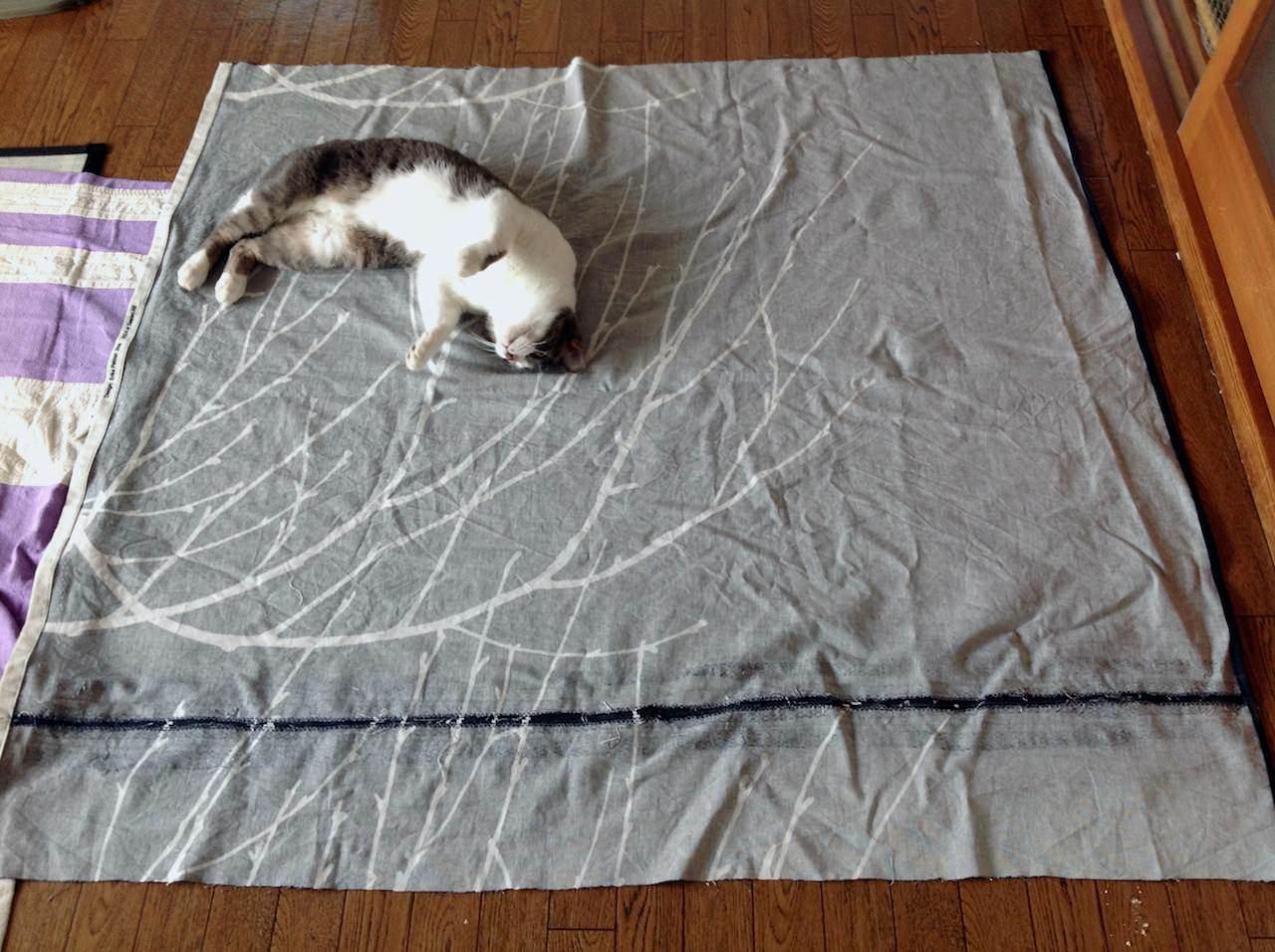 iPad_cats love textiles-35.jpg