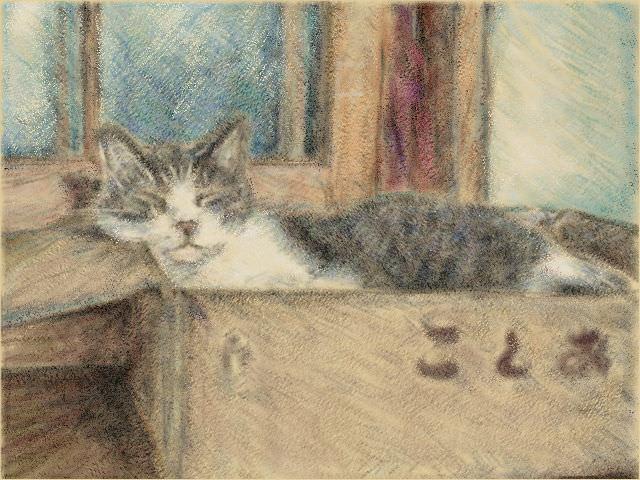 Nintendo 3DS LL_Cat Sketch_20131005.jpg