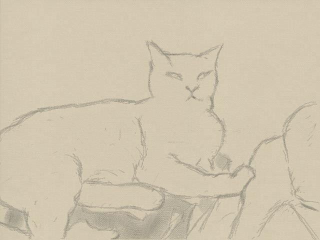Nintendo 3DS LL_Cat Sketch_20131017.jpg