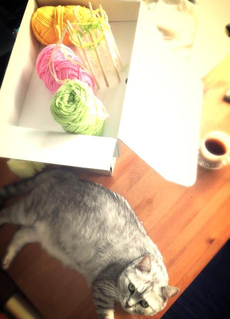 Spool Knitting Stripes Kitchen Sponge_2-28.jpg