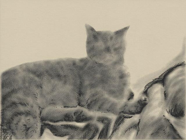Nintendo 3DS LL_Cat Sketch_20131106.jpg