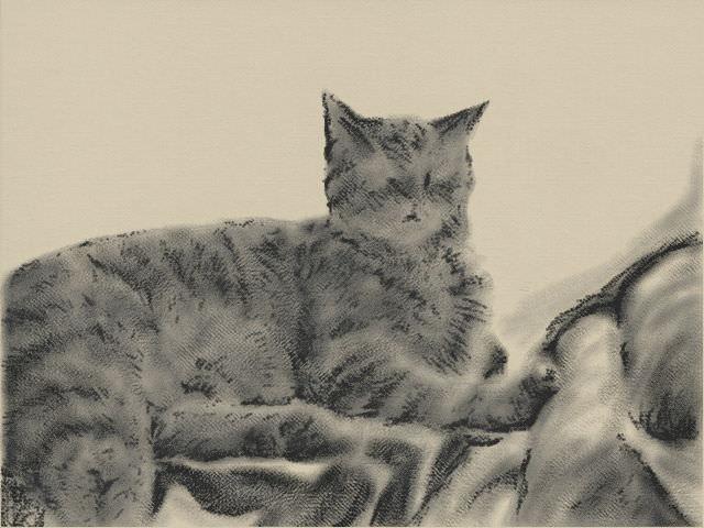 Nintendo 3DS LL_Cat Sketch_20131110.jpg