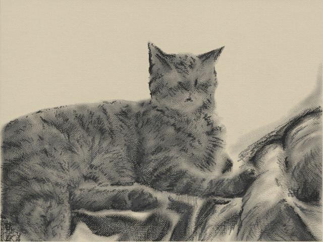 Nintendo 3DS LL_Cat Sketch_20131114.jpg