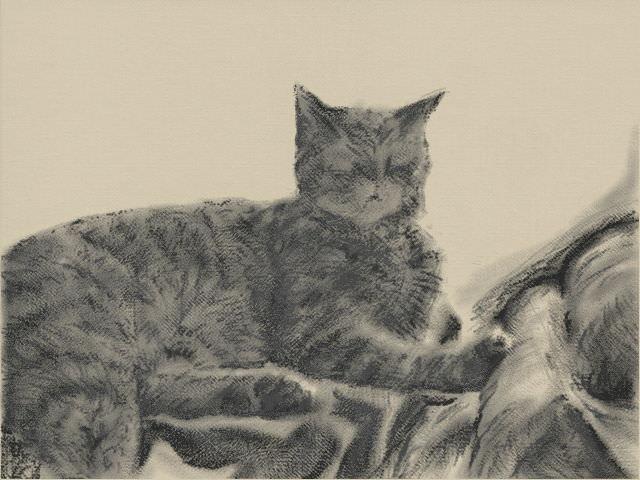 Nintendo 3DS LL_Cat Sketch_20131125.jpg
