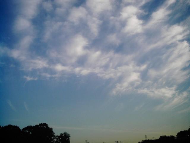 Polaroid-a520_sky_20131104-7.jpg