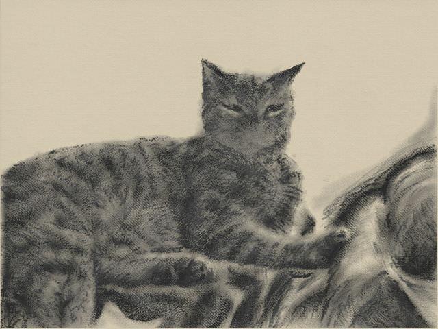 Nintendo 3DS LL_Cat Sketch_20131203.jpg