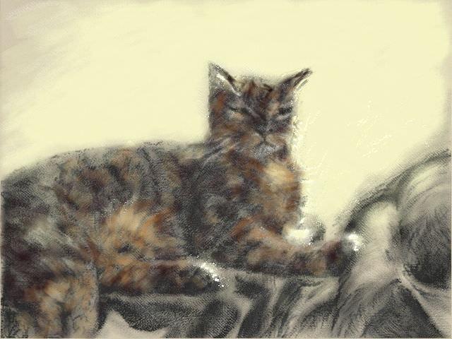 Nintendo 3DS LL_Cat Sketch_20131211.jpg
