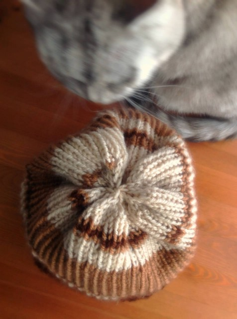circular needle knitting_hat-25.jpg