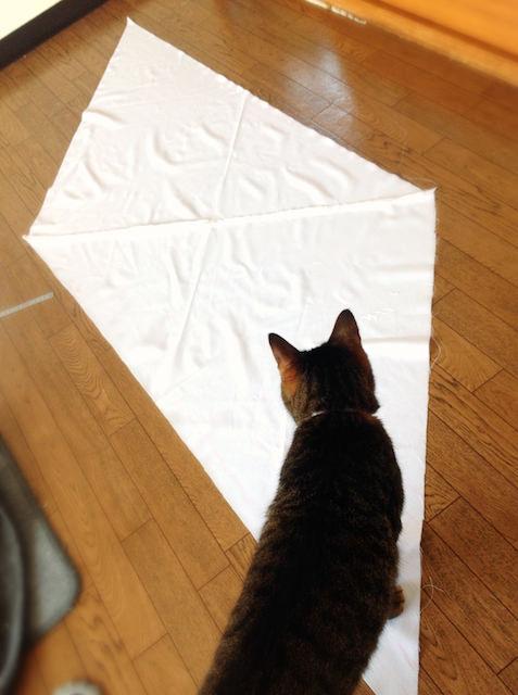 roll-boston-bag_cat-bed_2-1.jpg