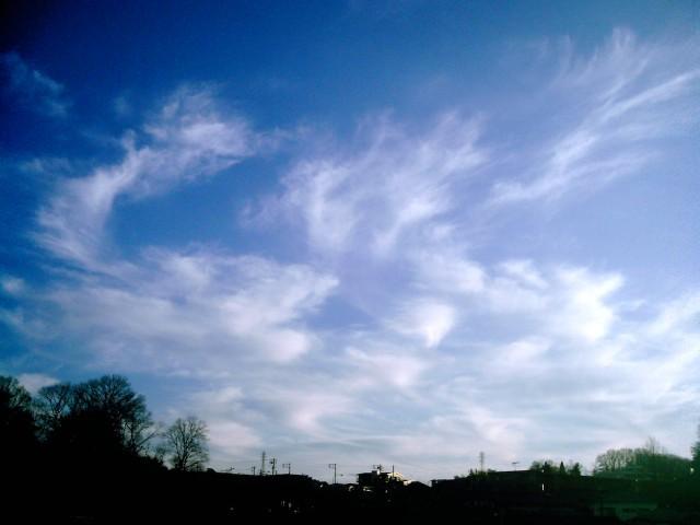 Polaroid-a520_sky20140407-2.jpg