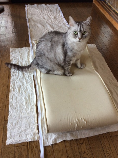 Piping Cat Bedspread-8.jpg