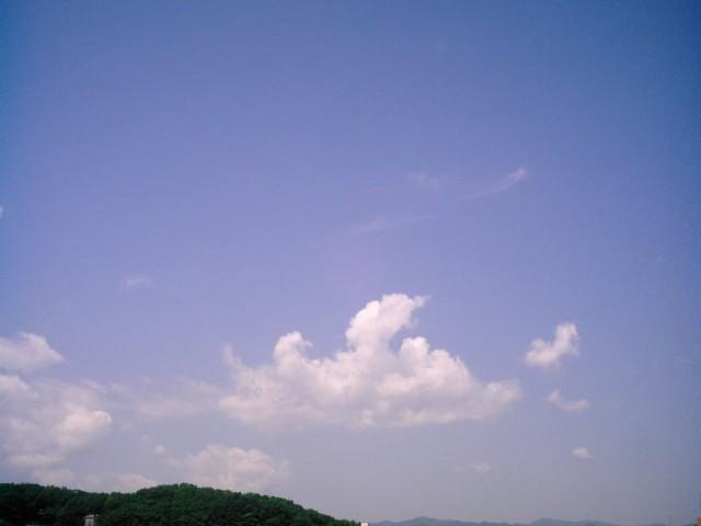 Polaroid-a520-sky_20140724-4.jpg