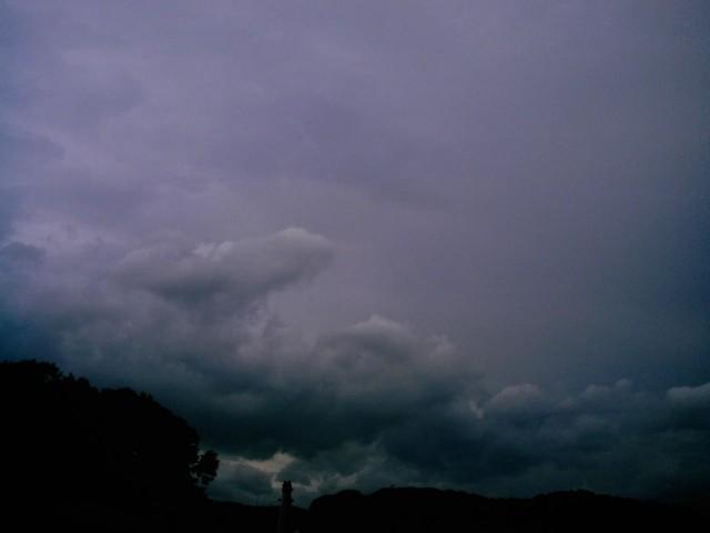 Polaroid a520_sky20140706-8.jpg