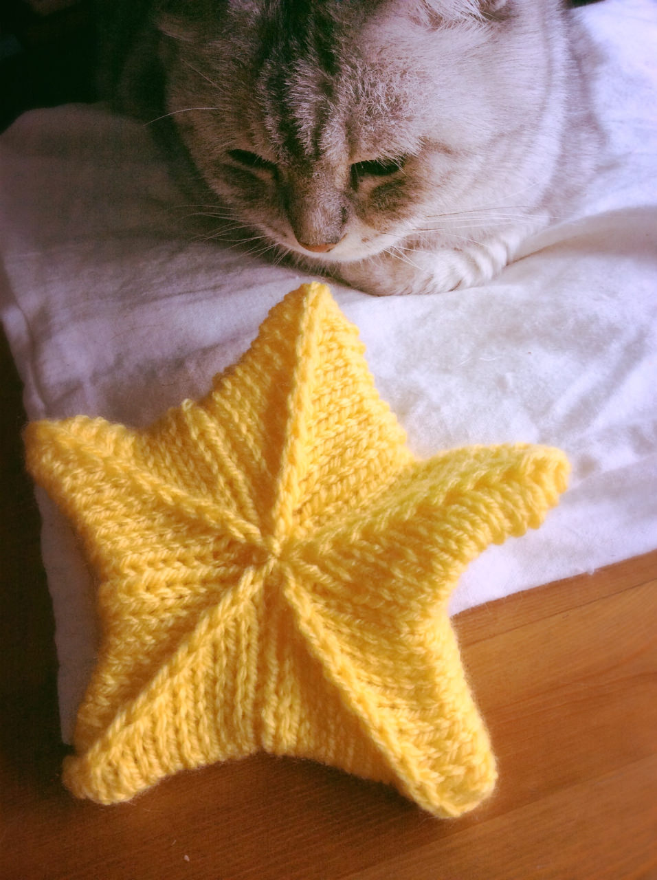 Stjarna Circular knitting needles-7.jpg