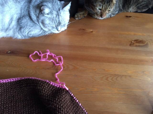 Escargot Knit Hat 2-13.jpg