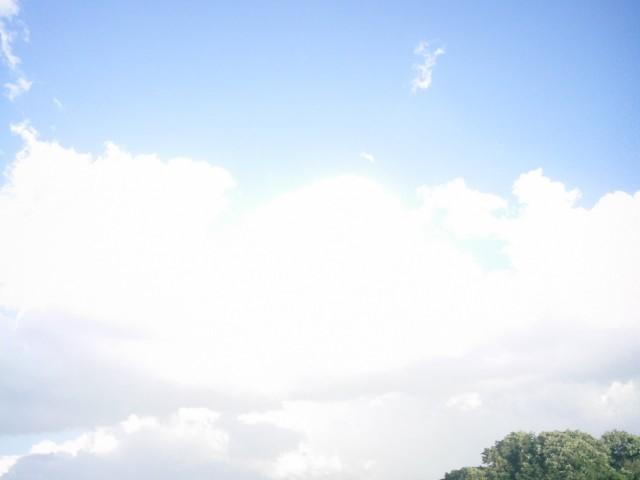Polaroid-a520_Sky20140909-7.jpg