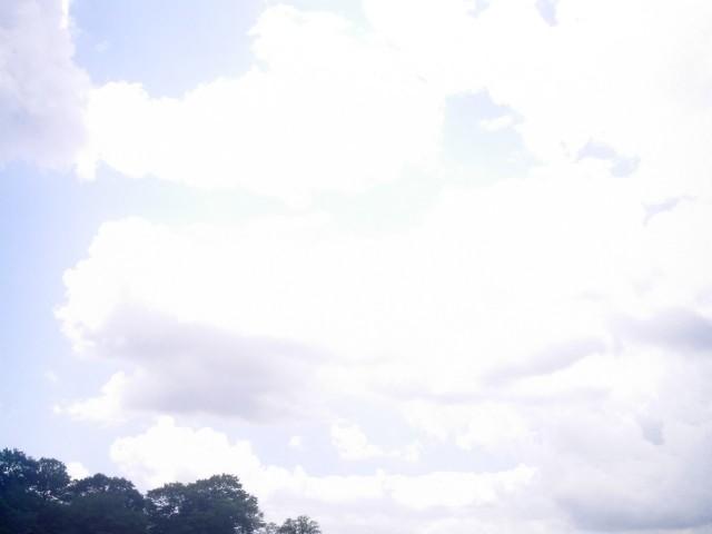 Polaroid-a520_Sky20140909-9.jpg