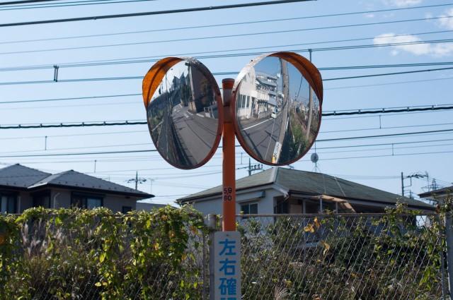 20141027walk-5
