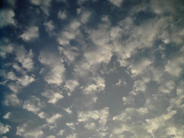 Polaroid-a520_sky20141021-1.jpg