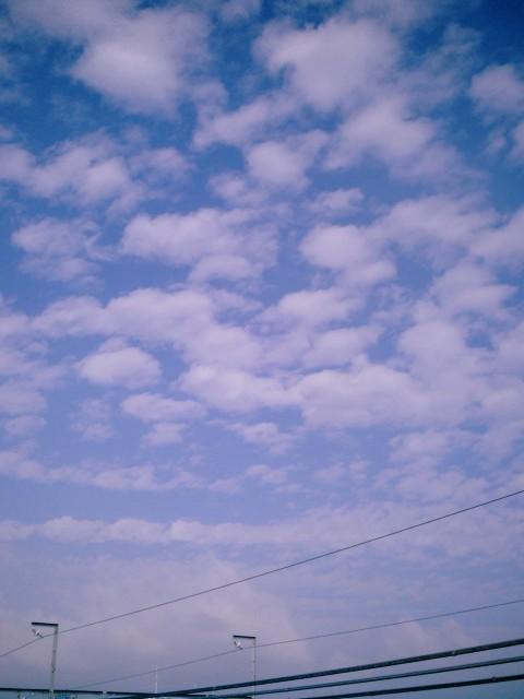 Polaroid-a520_sky20141021-10.jpg