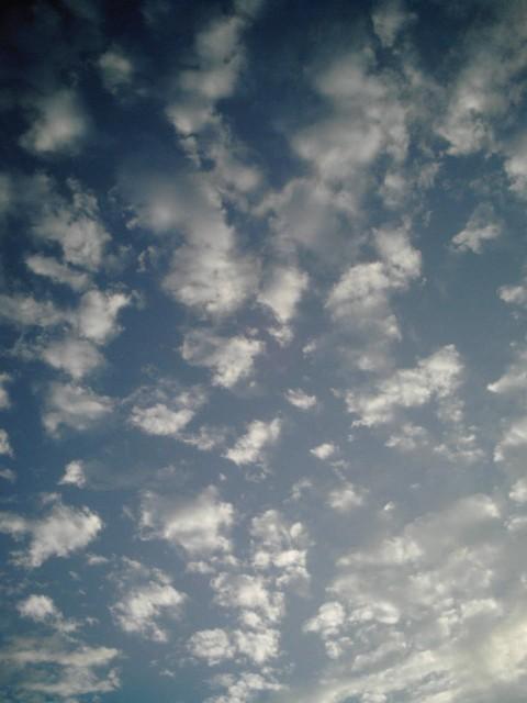 Polaroid-a520_sky20141021-3.jpg