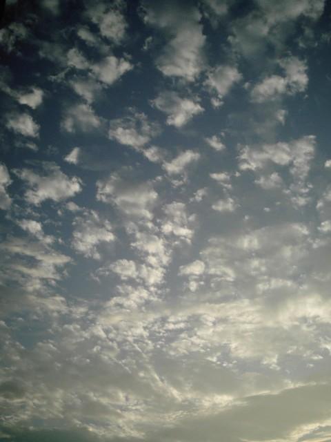 Polaroid-a520_sky20141021-4.jpg