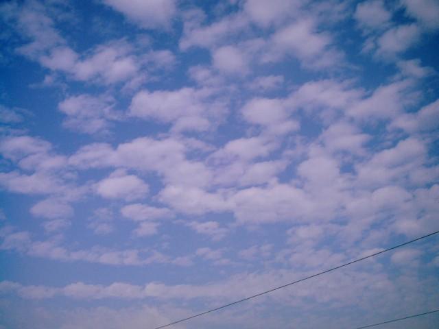 Polaroid-a520_sky20141021-5.jpg