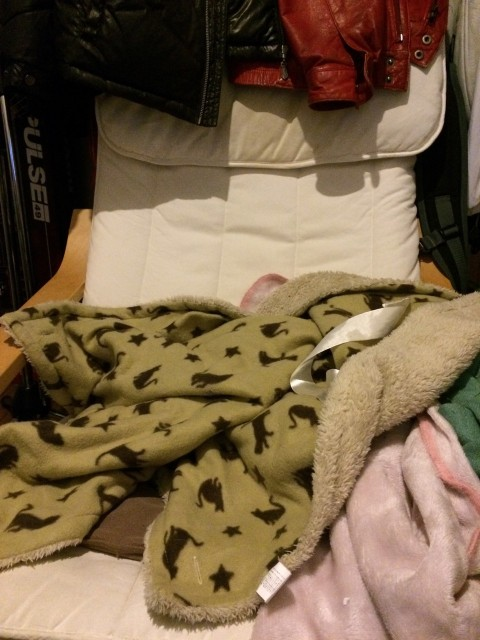 20141221catbed_3