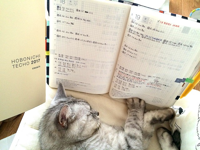 cat-health-care_hobonichi-techo-03.jpg