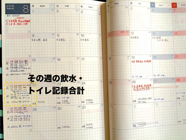 cat-health-care_hobonichi-techo-06.jpg