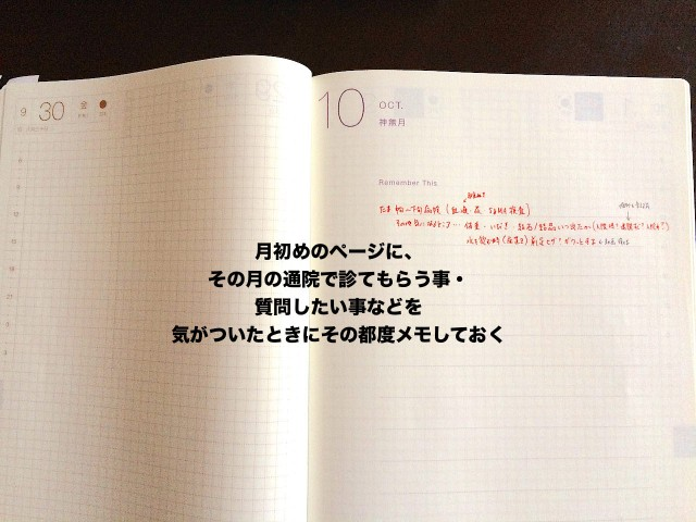 cat-health-care_hobonichi-techo-10.jpg