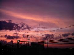 izone550雲