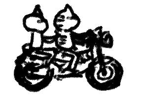 fuji2008bike.jpg