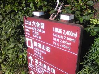 fuji2010-6.jpg