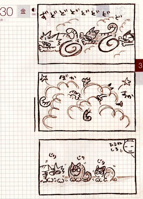 猫ら絵日記『雨が降る前は暴れる...?』