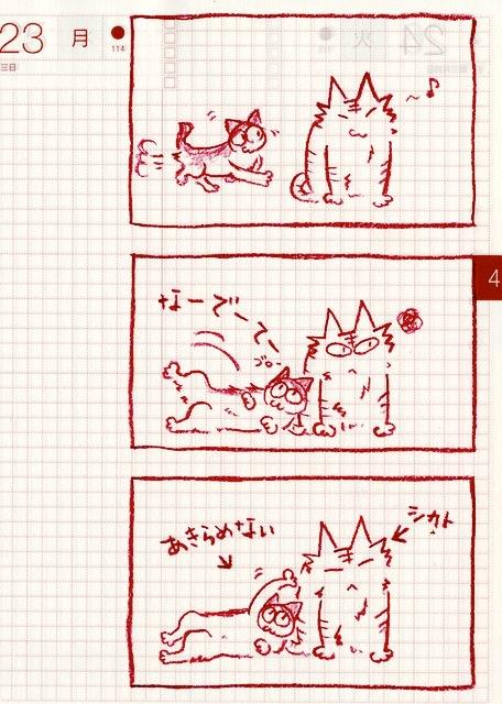 猫ら絵日記『オニイサンなでて〜!ぽちびっとの巻』