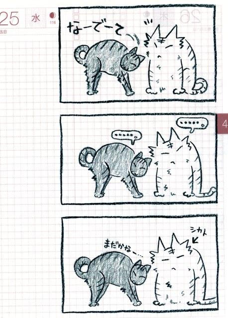 猫ら絵日記『オニイサンなでて〜!こげびっとの巻』