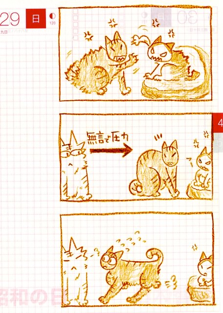 猫ら絵日記『オニイサンの仲裁すげー!!!』