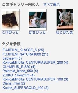 Picasaウェブアルバムで『日めくり猫らアルバム』始めました。2
