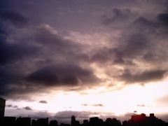 taifuuyuuhinishi.jpg